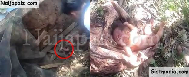 Wicked World New Born Baby Found Under Septic Tank