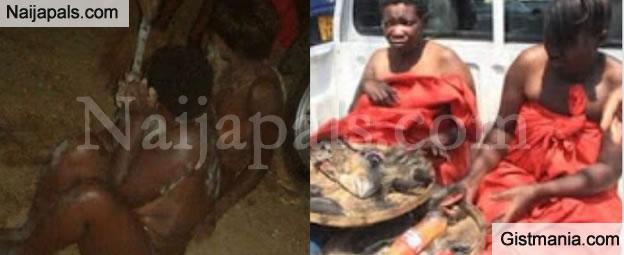 Accused witch commits suicide - Nehanda Radio