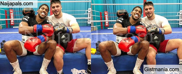 Nice! Anthony Joshua Gets New Sparring Partner, Albon Pervizaj Ahead Of Rematch With Andy Ruiz Jnr