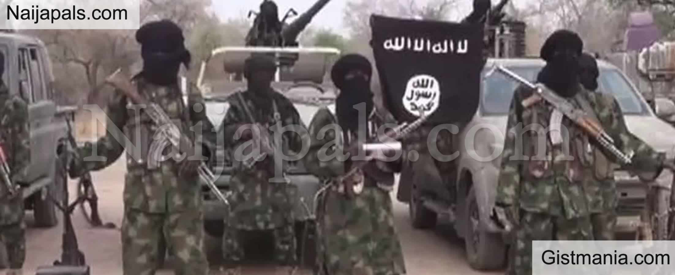 <img alt='.' class='lazyload' data-src='https://img.gistmania.com/emot/smh.gif' /><b> Boko Haram Offers Adamawa Community N2million Discount From N30million Ransom To Free Captives</b>