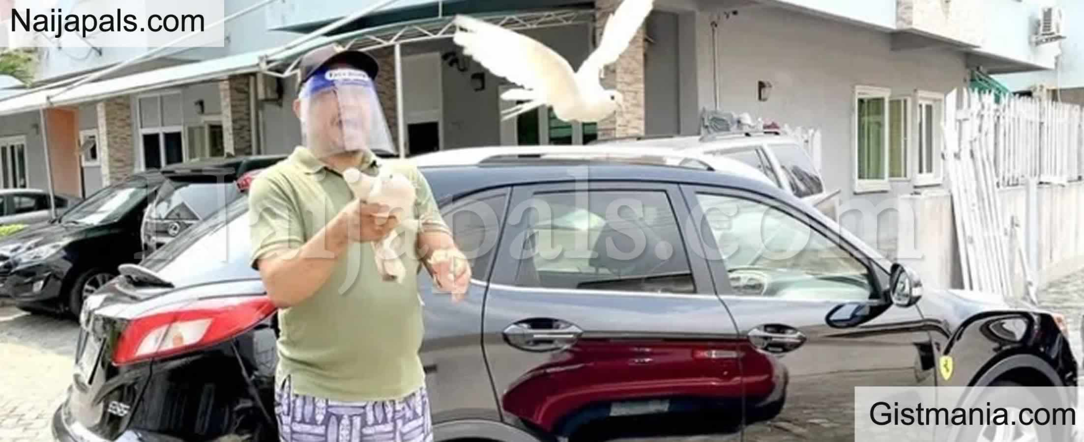 "<img alt='.' class='lazyload' data-src='https://img.gistmania.com/emot/video.gif' /> <b>""Wahala For Who Him Pigeons No Fly""</b> – Daddy Freeze Stylishly Shades Buhari As His Pigeons Fly After Releasing Them"