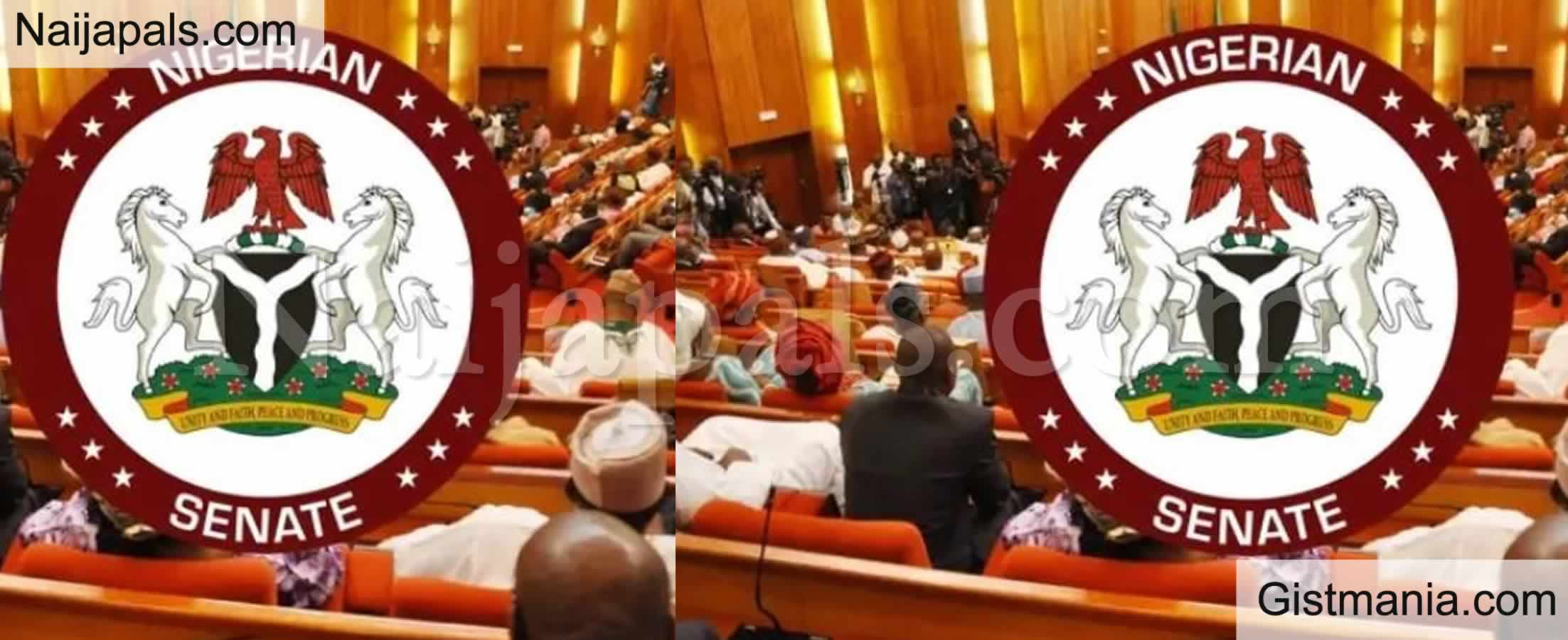 <img alt='.' class='lazyload' data-src='https://img.gistmania.com/emot/comment.gif' /> <b>400 Abandoned Water Projects Uncovered By Nigerian Senate</b>