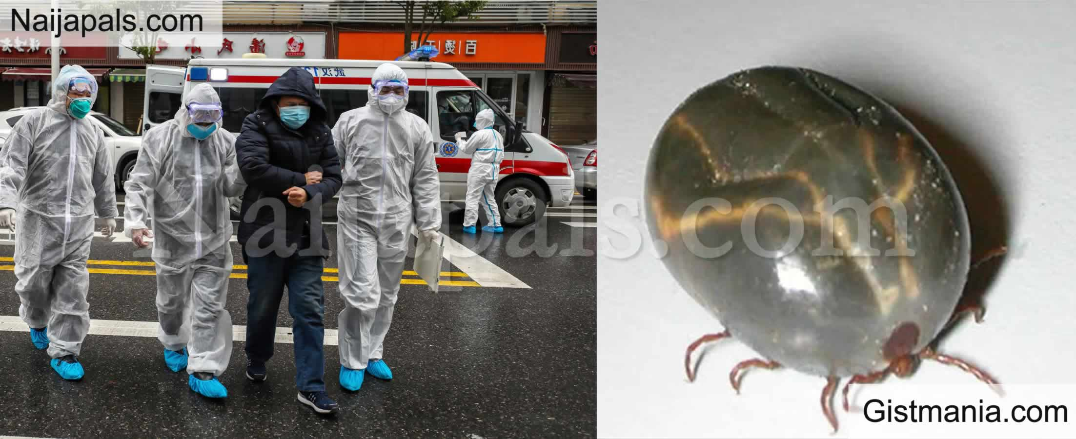 <img alt='.' class='lazyload' data-src='https://img.gistmania.com/emot/shocked.gif' /> JUST IN: <b>Panic As New Deadly Virus Surfaces In China</b>