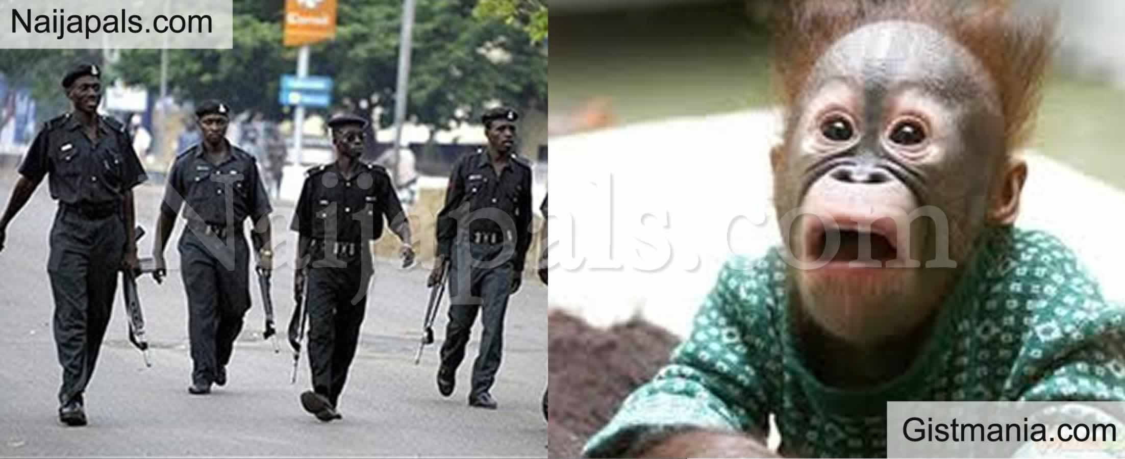 <img alt='.' class='lazyload' data-src='https://img.gistmania.com/emot/comment.gif' /> <b>One Killed And Other Injured As Police Officer Allegedly Shot Abia Revenue Officials</b>