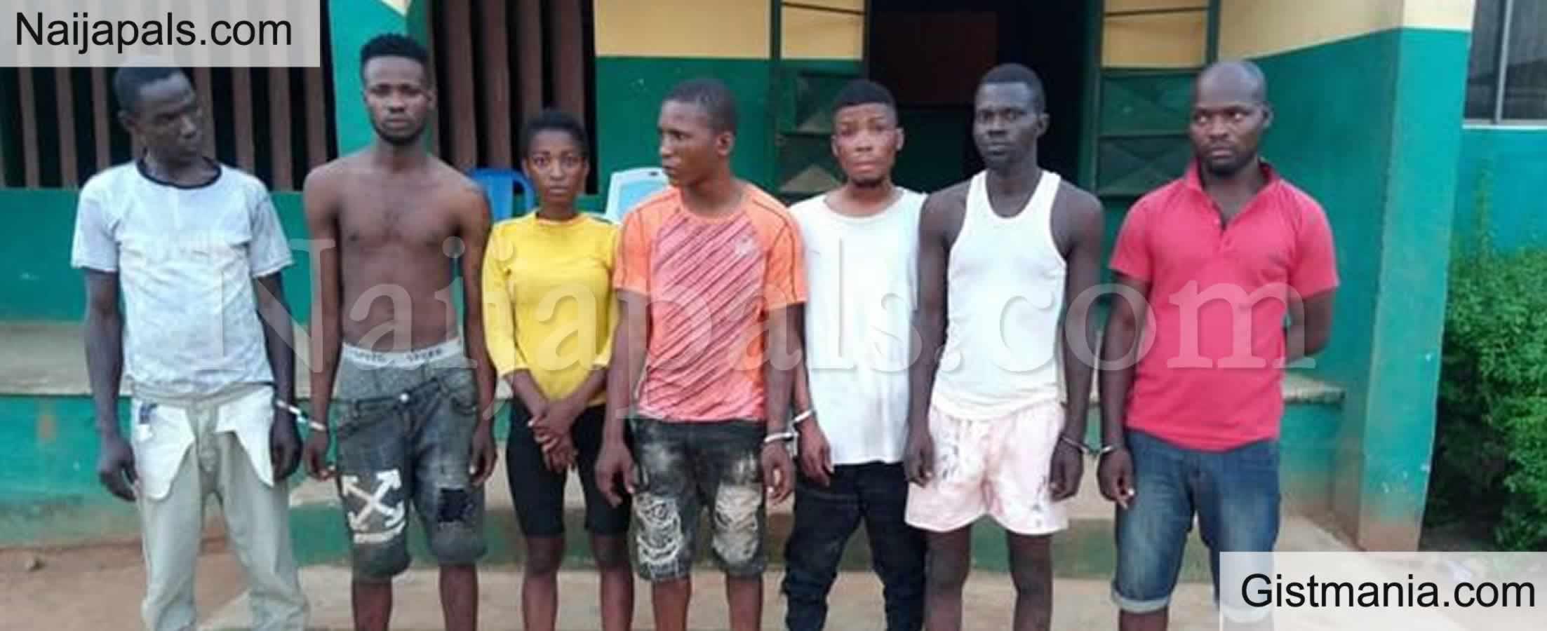 <img alt='.' class='lazyload' data-src='https://img.gistmania.com/emot/news.gif' /> <b>Lagos Police Arrest 7 Suspected Cultists</b> (Photo)