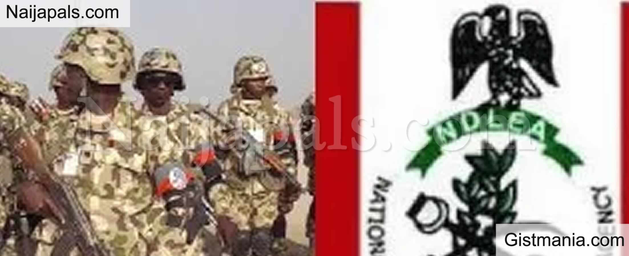 <img alt='.' class='lazyload' data-src='https://img.gistmania.com/emot/comment.gif' /> <b>Fake Police Officer, Soldier, NYSC Member Among 663 Drug Traffickers Arrested By NDLEA In Lagos</b>