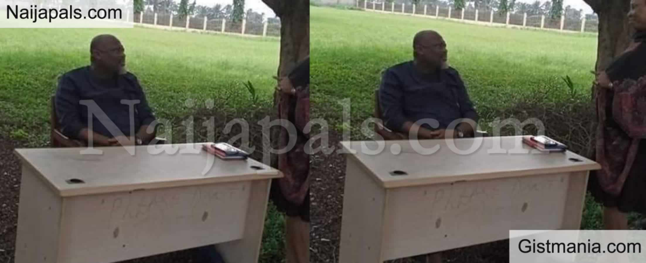 <img alt='.' class='lazyload' data-src='https://img.gistmania.com/emot/grin.gif' /> <b>Local Council Boss Resumes Work Under Mango Tree To Monitor Errant Workers</b> In Rivers (PHOTO)