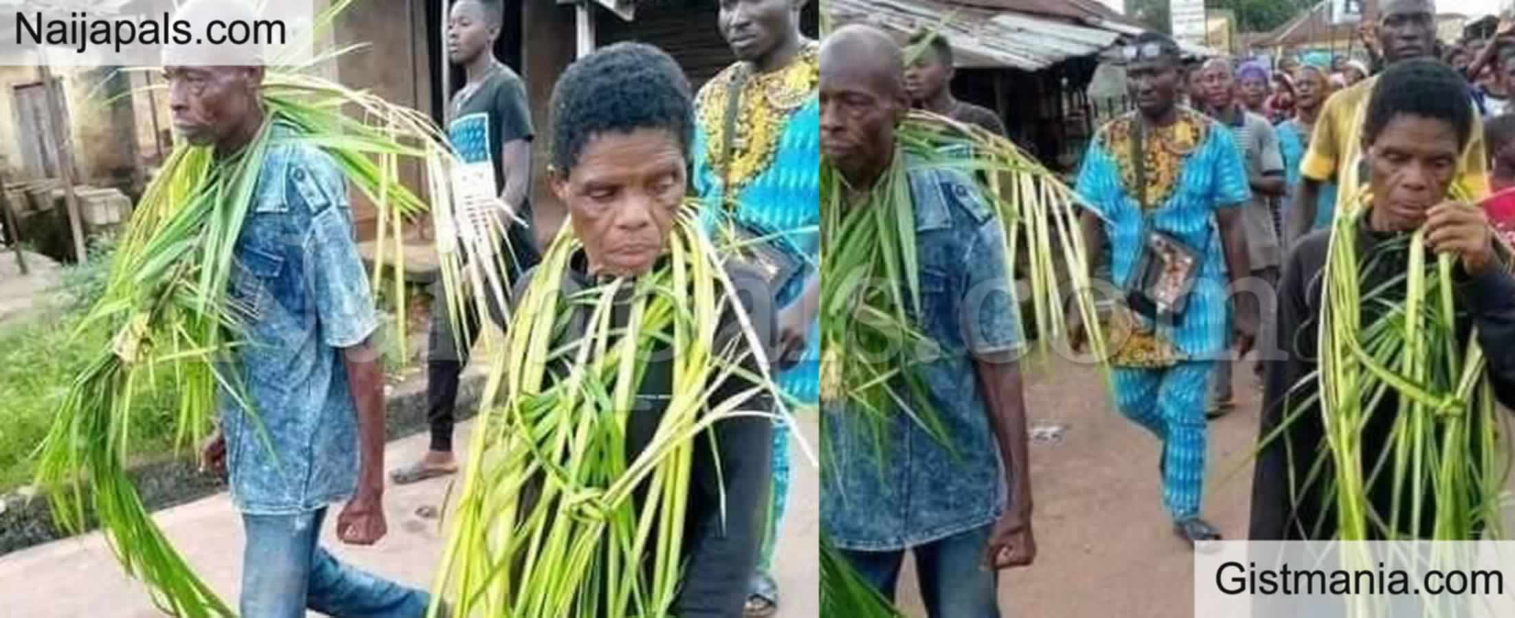 <img alt='.' class='lazyload' data-src='https://img.gistmania.com/emot/smh.gif' /> <b>Family In Imo State Murders And Bury Son In Shallow Grave Because He's Too Stubborn</b> (PHOTO)