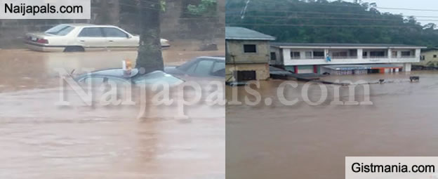 <img alt='.' class='lazyload' data-src='https://img.gistmania.com/emot/comment.gif' /> <b>No Fewer Than 25 People Killed & 22 Injured As Flood Ravages Bauchi State</b>