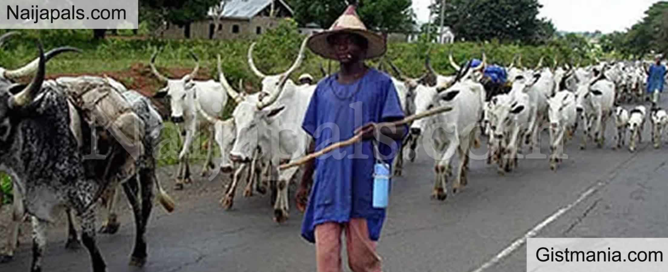 <img alt='.' class='lazyload' data-src='https://img.gistmania.com/emot/news.gif' /> JUST IN: <b>Lagos, Osun, Ondo & Others Impose Ban On Open Grazing Of Cattles Across The Regions</b>