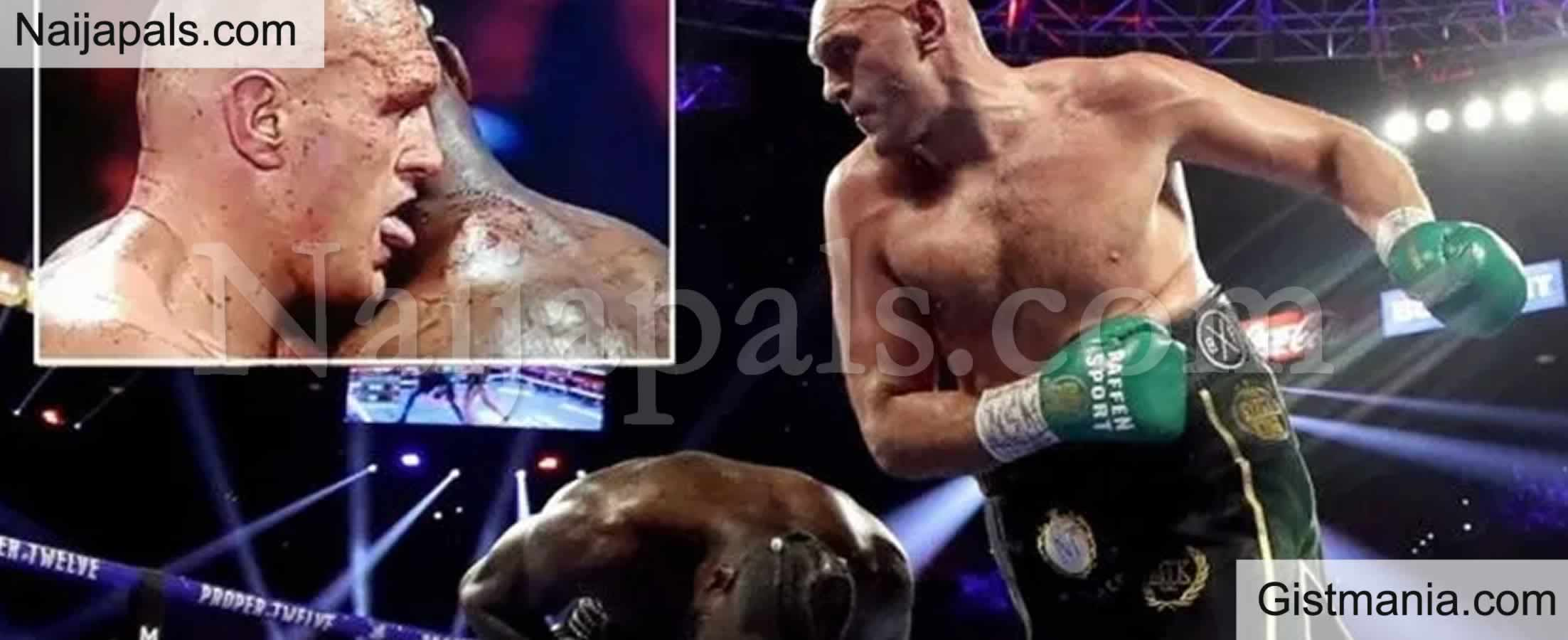 <img alt='.' class='lazyload' data-src='https://img.gistmania.com/emot/comment.gif' /> <b>Why I Licked Deontay Wilder's Blood During Fight</b> - Tyson Fury Reveals