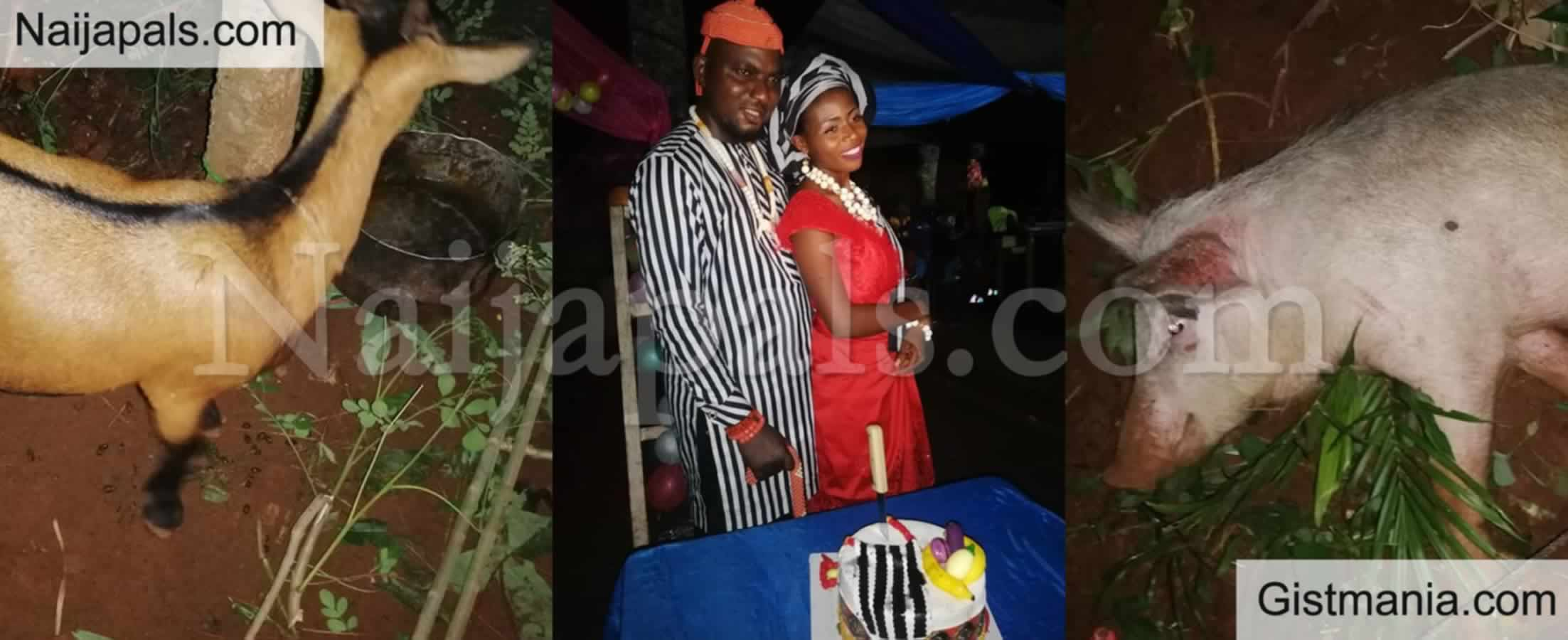 <img alt='.' class='lazyload' data-src='https://img.gistmania.com/emot/thumbs_up.gif' /> <b>'My In Law Deserve More Than This'  As Benue Groom Shows Of Items He Gave To His Igbo In-Laws</b>