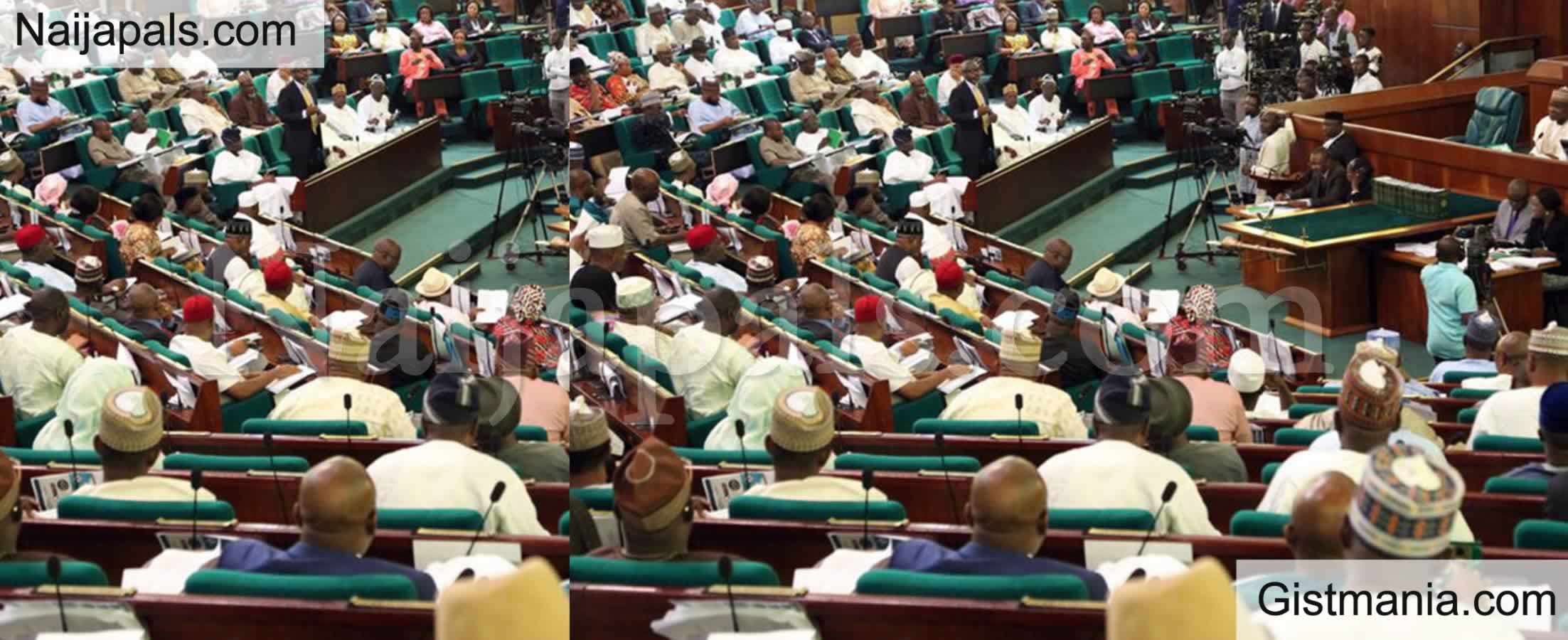 <img alt='.' class='lazyload' data-src='https://img.gistmania.com/emot/comment.gif' /> <b>Reps Decry Mass Resignation Of Soldiers Fighting Boko Haram, Set To Probe</b>