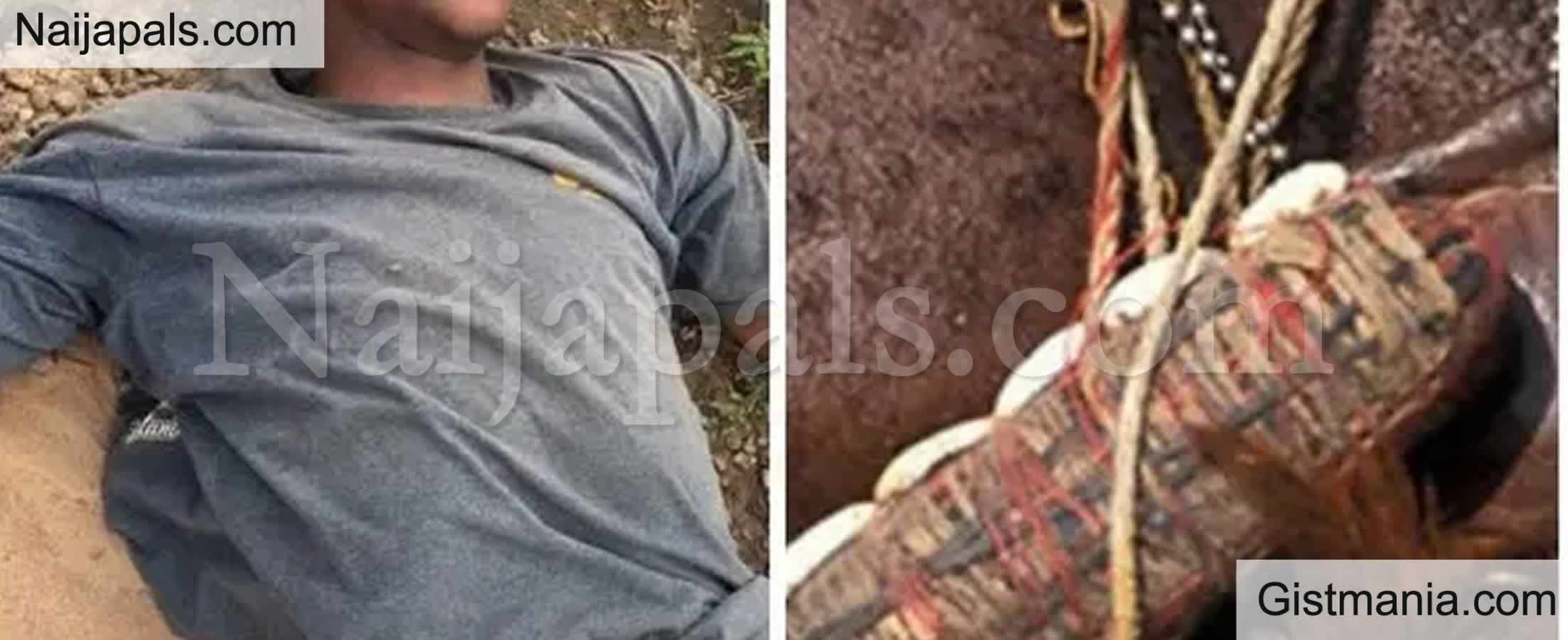 <img alt='.' class='lazyload' data-src='https://img.gistmania.com/emot/cry.gif' /> <b>Girlfriend Shoots Lover Dead While Testing Local Charm In Calabar</b>