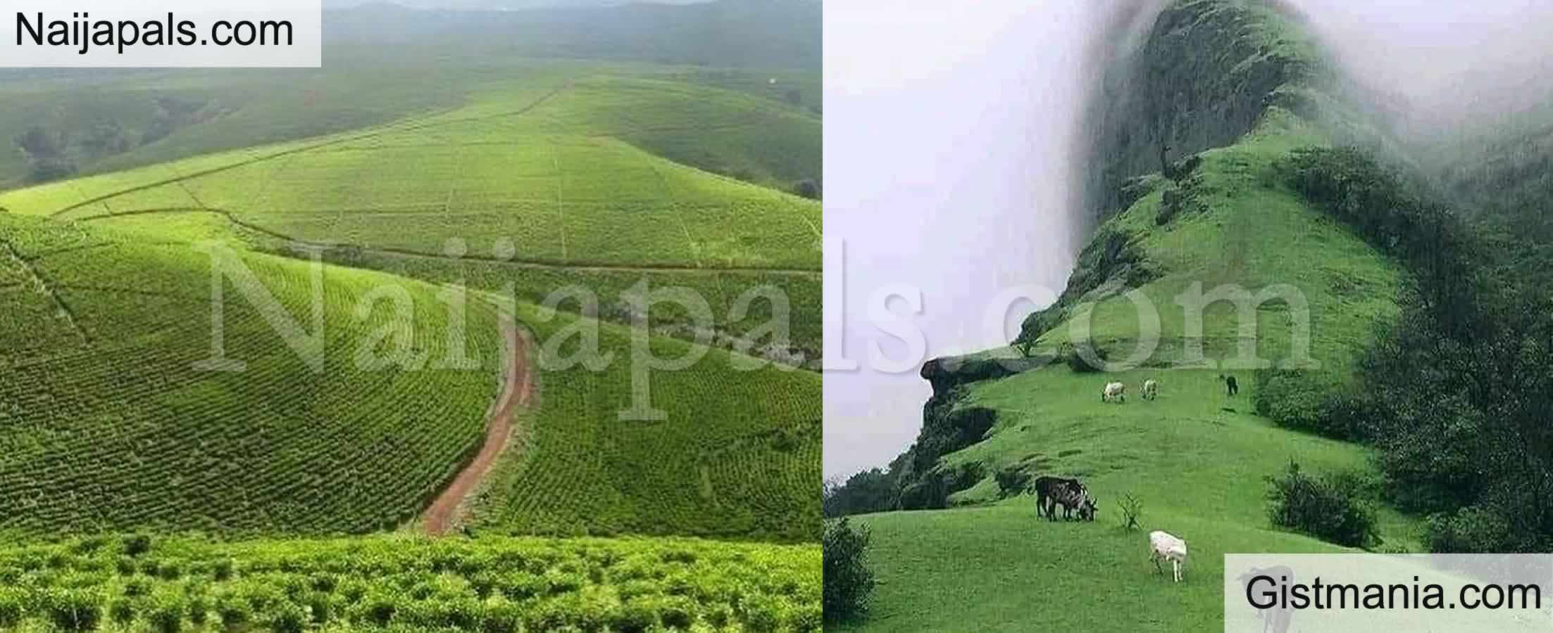 <img alt='.' class='lazyload' data-src='https://img.gistmania.com/emot/photo.png' /> <b>Mambila Plateau, Taraba State Nigeria Beautiful Nature That FG Failed To Tap Into Tourism</b>