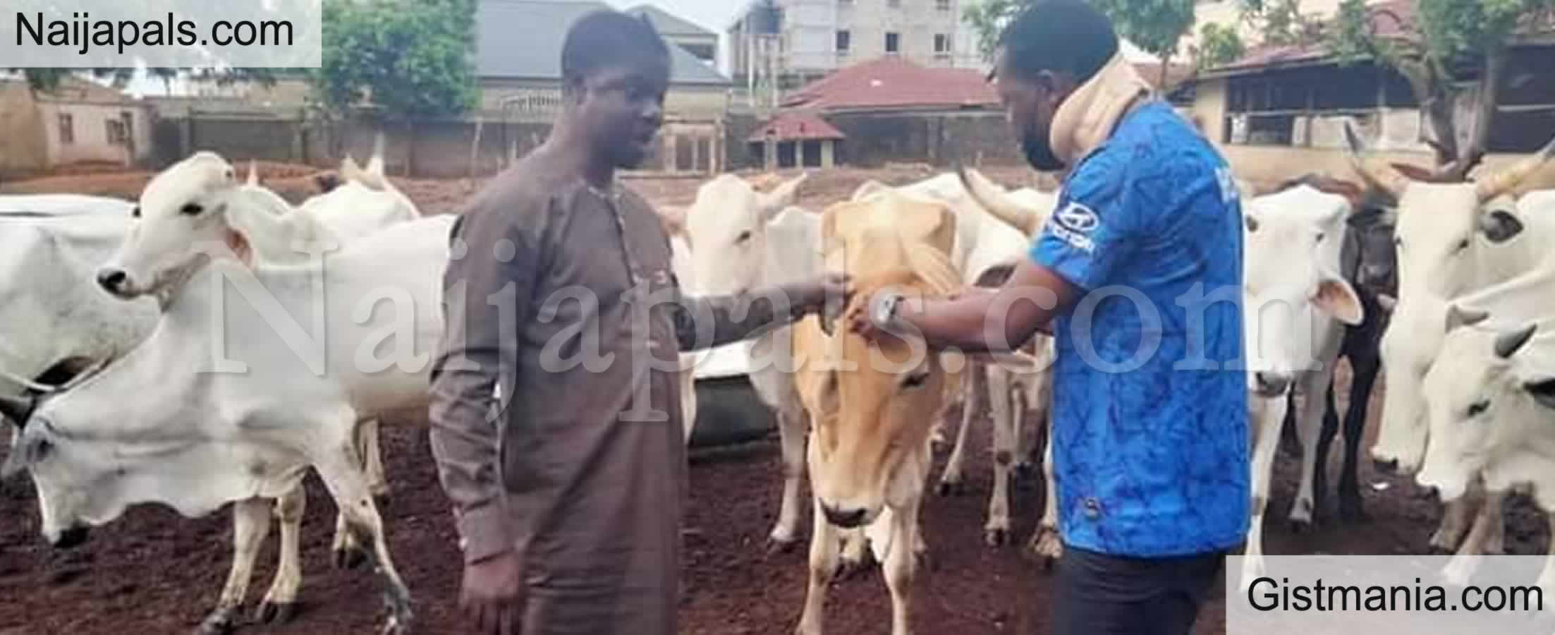 <img alt='.' class='lazyload' data-src='https://img.gistmania.com/emot/comment.gif' /> <b>Benue Varsity Lecturer Disapprove Open Grazing, Reveals He's a Herdsman But Ranch His Cattle</b>