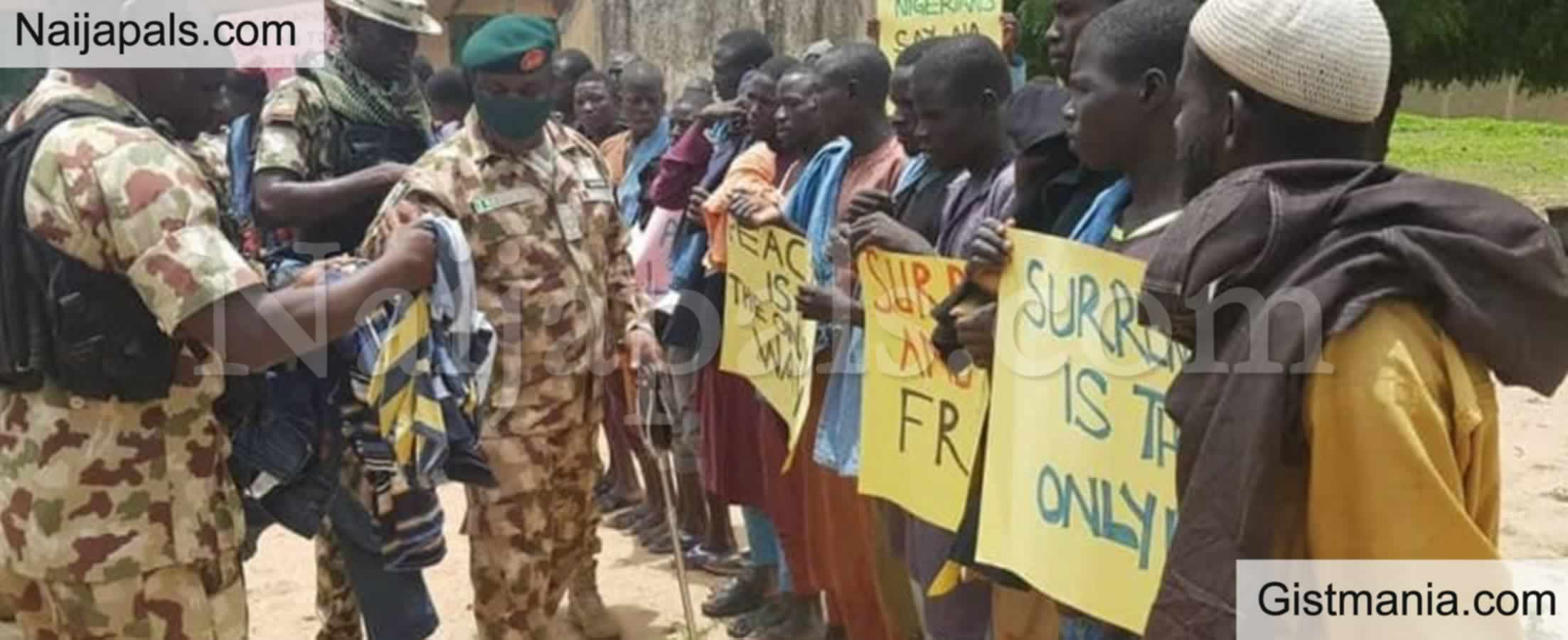 <img alt='.' class='lazyload' data-src='https://img.gistmania.com/emot/comment.gif' /> <b>We Are Not Pampering Repentant Terrorists, The Are Humans Too</b> - Nigerian Army