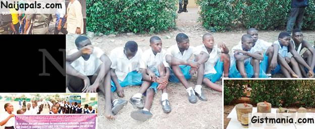 I Became A Cultist To Avenge My Sister's Death' - Teenage