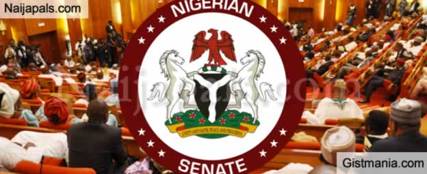 <img alt='.' class='lazyload' data-src='https://img.gistmania.com/emot/news.gif' /> <b>Senate Moves to Review Age Limit For Job Seekers</b>