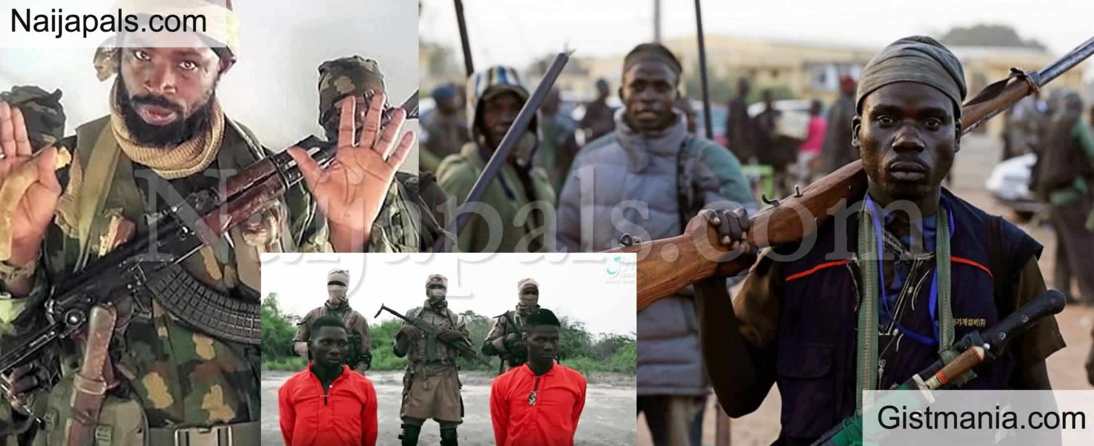 <img alt='.' class='lazyload' data-src='https://img.gistmania.com/emot/smh.gif' /><img alt='.' class='lazyload' data-src='https://img.gistmania.com/emot/news.gif' /> <b>Husband And Wife Killed As Boko Haram Terrorists Bombs Borno Again</b>