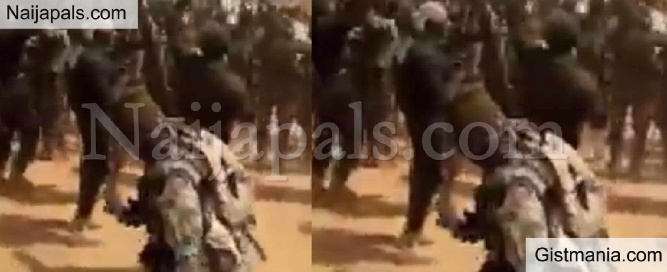 <img alt='.' class='lazyload' data-src='https://img.gistmania.com/emot/thumbs_up.gif' /> Video: <b>Nigerian Soldiers Celebrating And Jubilating After Capturing A Boko Haram Stronghold</b>